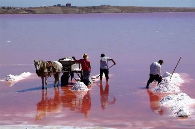 13 Most Beautiful Pink Lakes Around The World