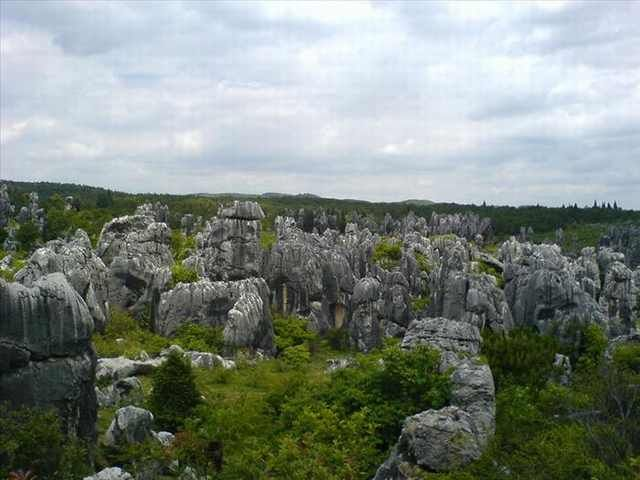 Explore The Beauty Of Shilin Stone Forest, China