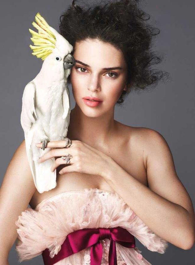 Kendall Jenner's Colorful Shoot For Vogue Magazine